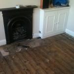 capital flooring 559
