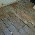 capital flooring 934
